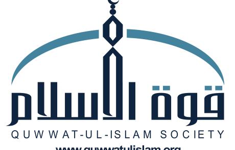 QIS logo